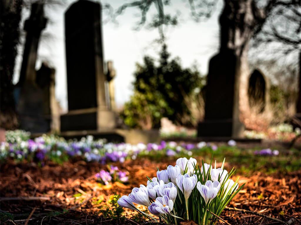 Новые изменения в похоронном деле упростят жизнь граждан